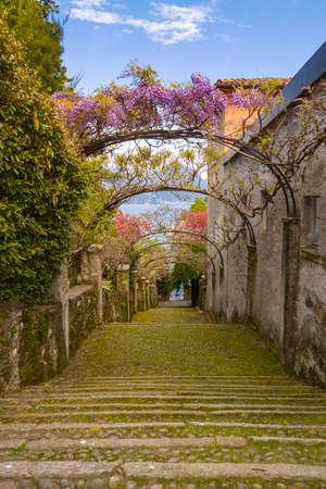 borromeo: Landscape with Island Madre, on Maggiore lake, Stresa, Italy