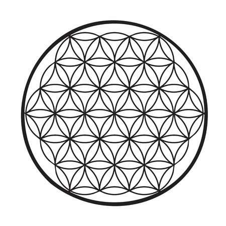 Geometrical figure composed of multiple overlapping circles, arranged so that they form flower pattern symmetry like a hexagon, called the flower of life