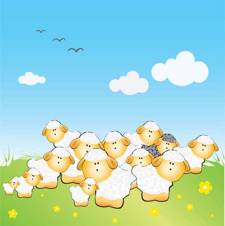 ovejita bebe: El reba�o de ovejas con un garbanzo negro en la hierba