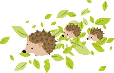 hedgehog: Mother hedgehog with two hadgehog babies on the leaves