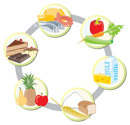 The food in groups  meat, poultry and fish   vegetables  milk and dairy   cereals   friut   sweets and fats Vector