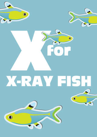 X for the X-ray fish, an animal alphabet for the kids Vector