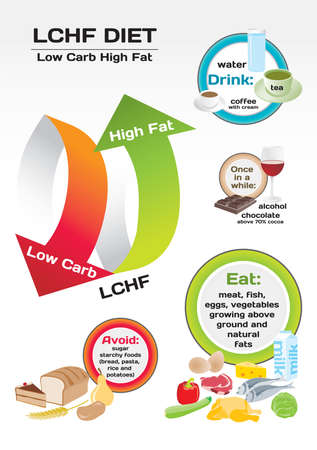 carb: Diet Low Carb High Fat (LCHF) infographic Illustration