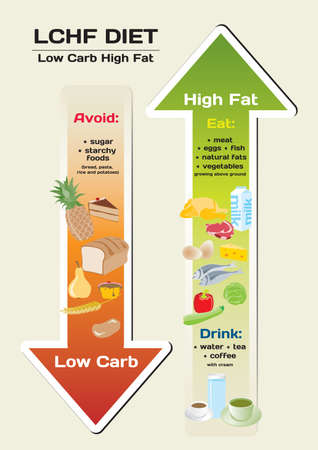 habits: Diet Low Carb High Fat (LCHF) infographic Illustration