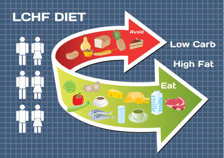 diet plan: Diet Low Carb High Fat (LCHF) infographic Illustration