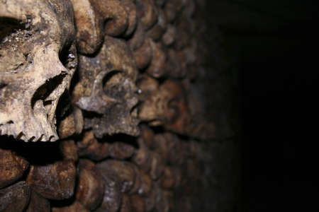 Skulls in the Catacombs in Paris photo