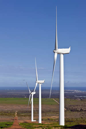 wind force: wind turbines on a hill in static position