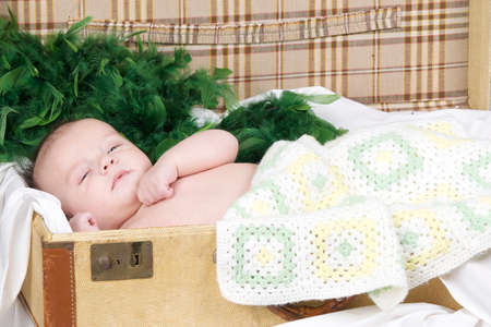 baby lying in a suitcase with blanket and green feathers photo