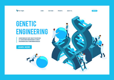Isometric genetic engineering, DNA structure, medical workers, scientists. Template Landing page.