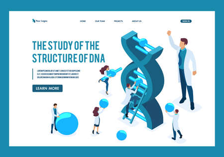 Isometric Scientists are investigating the structure of DNA, making experiments. Template Landing page.