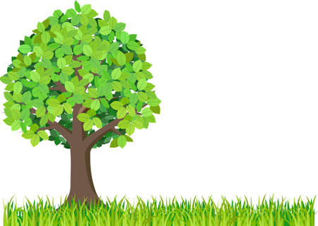 Grass and green tree isolated on white background. Vector