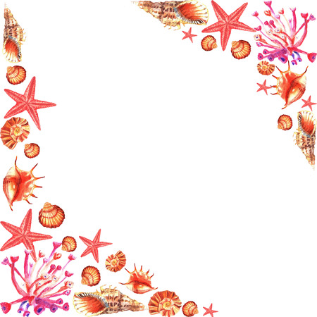 Watercolour hand painted frame of pink corals, shells, sea-star on white background Фото со стока
