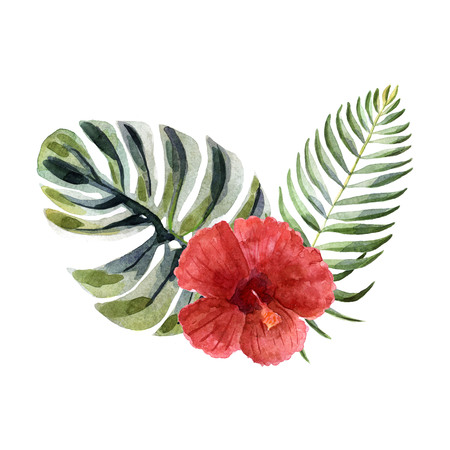 Watercolor tropical floral composition with hibiscus isolated on a white background