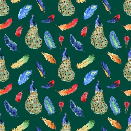 Watercolor summer seamless pattern with bright tropical feathers and peacock on a green background