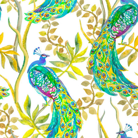 ave del paraiso: Vector acuarela hermoso para su dise�o. Vectores