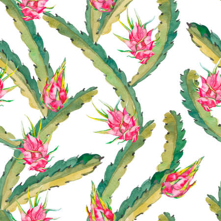 Tropical seamless pattern. Tropical fruits pattern. Exotic leaves and fruit. Vector.Dragonfruit, pitaya,pitahaya. Pitaya is the plant in Cactaceae family or Cactus.