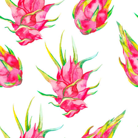 pitahaya: Tropical seamless pattern. Tropical fruits pattern. Exotic leaves and fruit. Vector.Dragonfruit, pitaya,pitahaya. Pitaya is the plant in Cactaceae family or Cactus.
