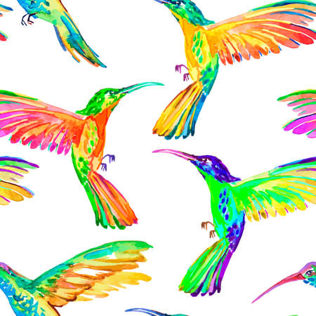 hummingbird: Vector.