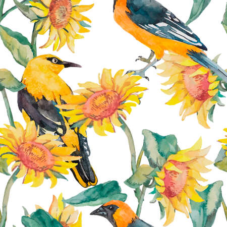 flower fields: Exotic bird. Watercolor. Vector.Sunflowers and oriole pattern watercolor.