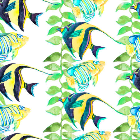 trigger fish: Illustration for your design and work. Handmade. Illustration