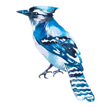 Illustration for your design and work. Handmade. Vektorové ilustrace