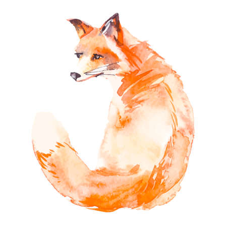 fox: Illustration for your design and work. Handmade. Illustration