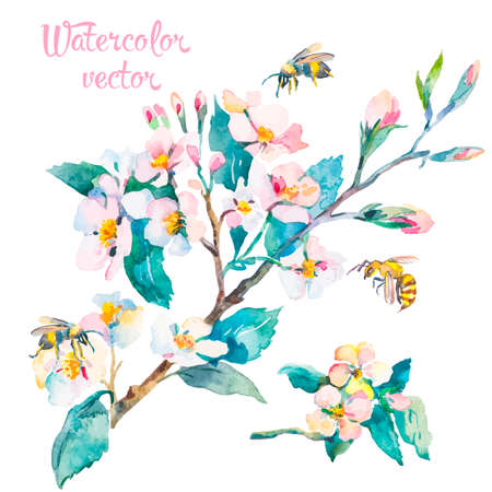 taffy: Illustration for your design and work. Watercolor. Stock Photo