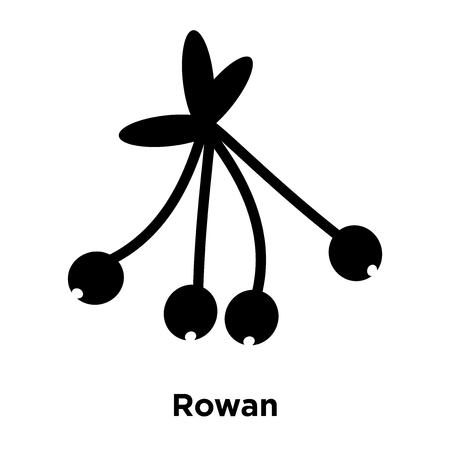 Rowan icon vector isolated on white background, logo concept of Rowan sign on transparent background, filled black symbol