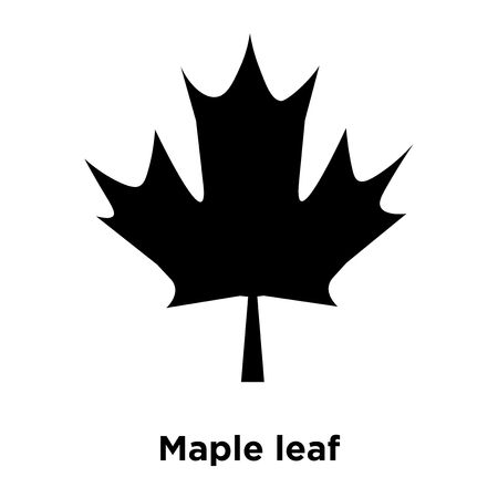 Maple leaf icon vector isolated on white background, logo concept of Maple leaf sign on transparent background, filled black symbol