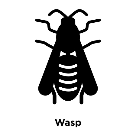 Wasp icon vector isolated on white background, logo concept of Wasp sign on transparent background, filled black symbol