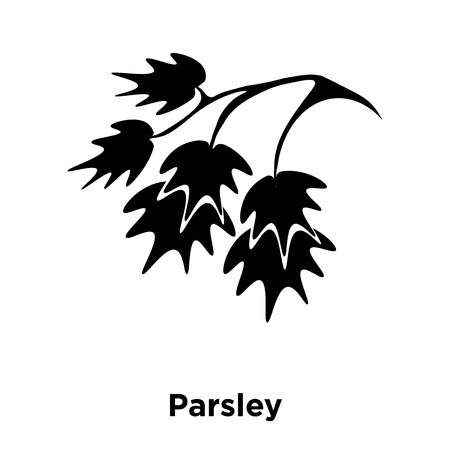 Parsley icon vector isolated on white background, logo concept of Parsley sign on transparent background, filled black symbol