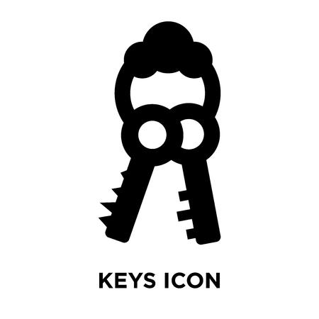 Keys icon vector isolated on white background, logo concept of Keys sign on transparent background, filled black symbol