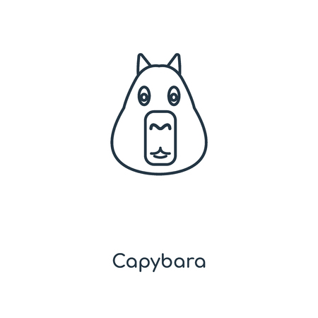 Capybara concept line icon. Linear Capybara concept outline symbol design. This simple element illustration can be used for web and mobile UIUX.