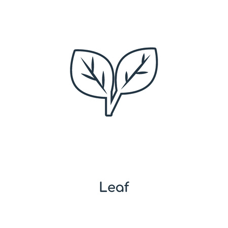 Leaf concept line icon. Linear Leaf concept outline symbol design. This simple element illustration can be used for web and mobile UI/UX. Ilustração
