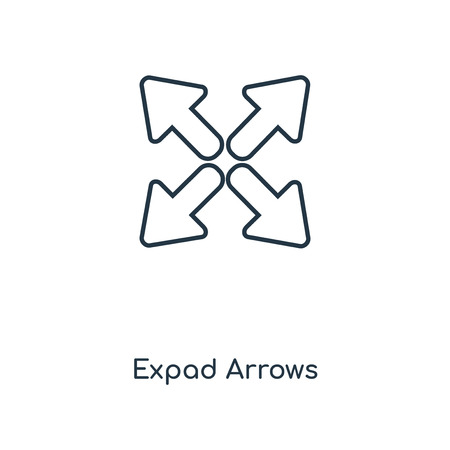 Expad Arrows concept line icon. Linear Expad Arrows concept outline symbol design. This simple element illustration can be used for web and mobile UI/UX.