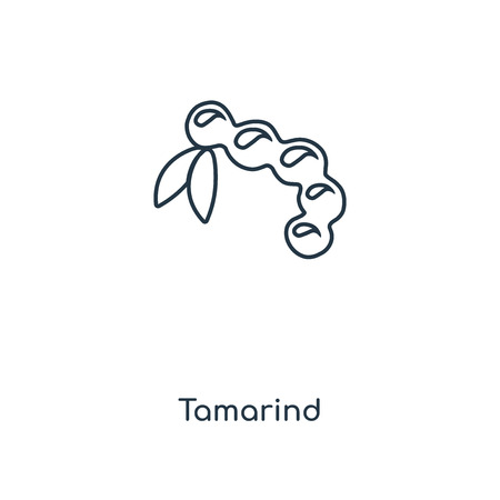 Tamarind concept line icon. Linear Tamarind concept outline symbol design. This simple element illustration can be used for web and mobile UIUX.
