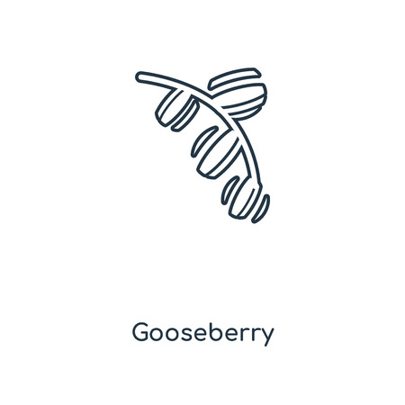 Gooseberry concept line icon. Linear Gooseberry concept outline symbol design. This simple element illustration can be used for web and mobile UI/UX.