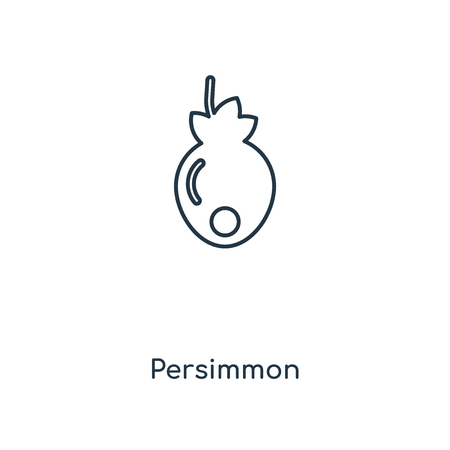 Persimmon concept line icon. Linear Persimmon concept outline symbol design. This simple element illustration can be used for web and mobile UIUX. Stock Illustratie