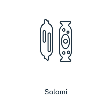 Salami concept line icon. Linear Salami concept outline symbol design. This simple element illustration can be used for web and mobile UI/UX.