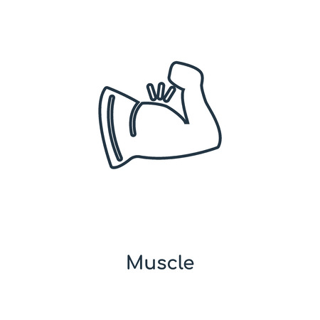 Muscle concept line icon. Linear Muscle concept outline symbol design. This simple element illustration can be used for web and mobile UIUX.