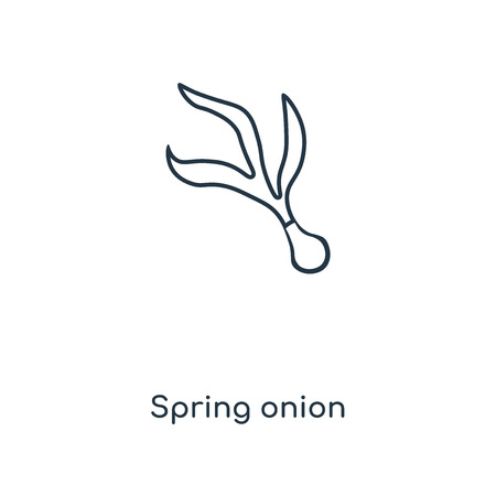 Spring onion concept line icon. Linear Spring onion concept outline symbol design. This simple element illustration can be used for web and mobile UI/UX. Ilustração