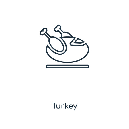 Turkey concept line icon. Linear Turkey concept outline symbol design. This simple element illustration can be used for web and mobile UI/UX. 일러스트