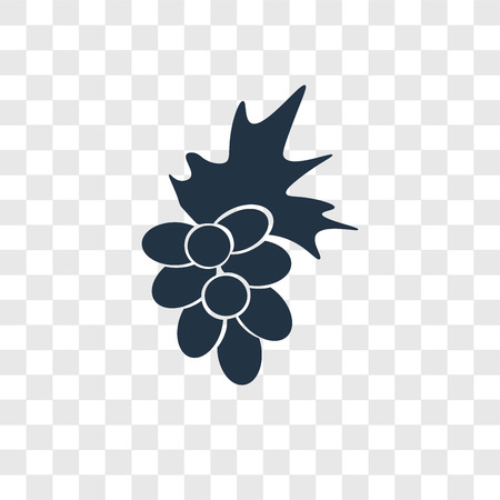 Grapes vector icon isolated on transparent background, Grapes transparency logo concept 向量圖像