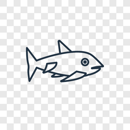 Shark concept vector linear icon isolated on transparent background, Shark concept transparency concept in outline style 矢量图像