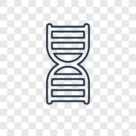 DNA strand concept vector linear icon isolated on transparent background, DNA strand concept transparency concept in outline style