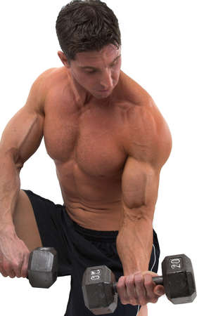 trained: bodybuilder working out Stock Photo