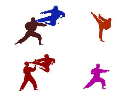 Karate silhouette Ilustrace
