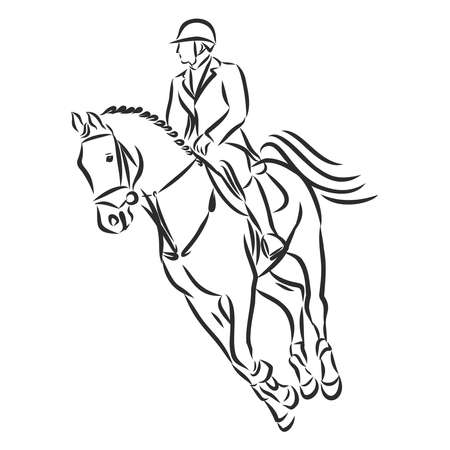 jumping horse,black white picture isolated on white background,vector illustration Stock fotó - 136138537