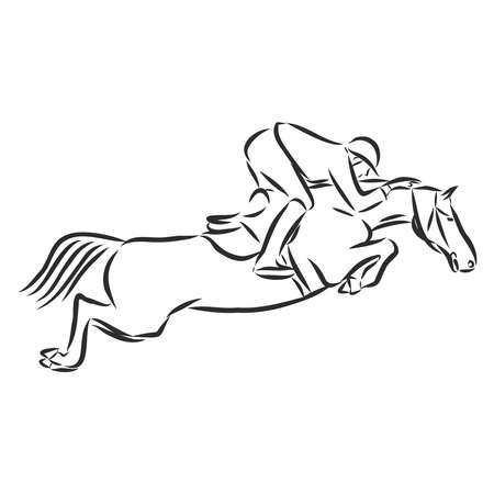 jumping horse,black white picture isolated on white background,vector illustration Stock fotó - 136138711