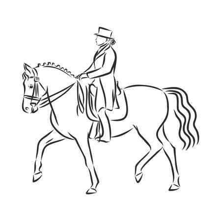 Uno schizzo di un cavaliere di dressage su un cavallo che esegue il mezzo passaggio.